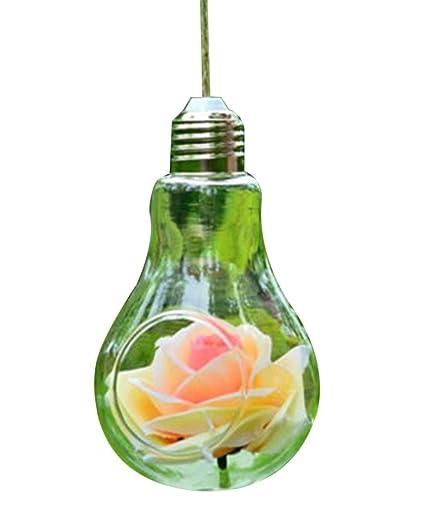 AOHONG colgante bombilla forma jarrón de cristal flores maceta contenedor decoración del hogar, vidrio,