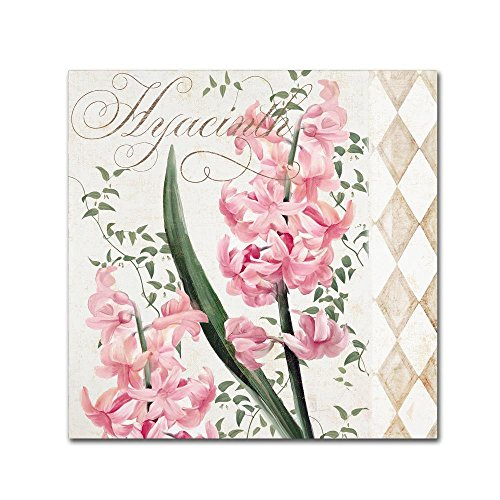 Hyacinth by Color Bakery, 18x18-Inch Pretty Flower Canvas Wall Art