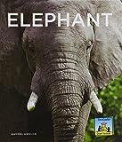 Giant Animals