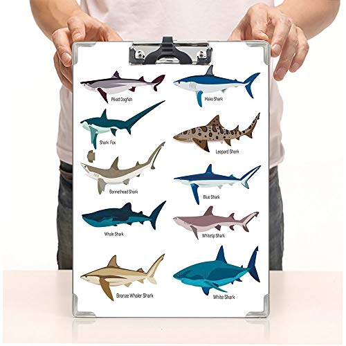 - Custom Printing Clipboard,Hardboard Clipboard Pack,Sharks Bronze Whaler and Piked Dogfish Fox,Office School Workers Business use