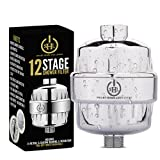 Smart Home and Living 12 Stage Shower Filter- Premium Chrome Housing with 2 Replaceable Cartridges - Universal Attachment - Removes Chlorine, Heavy Metals, Hard Water - Helps Dry Itchy Skin and Hair