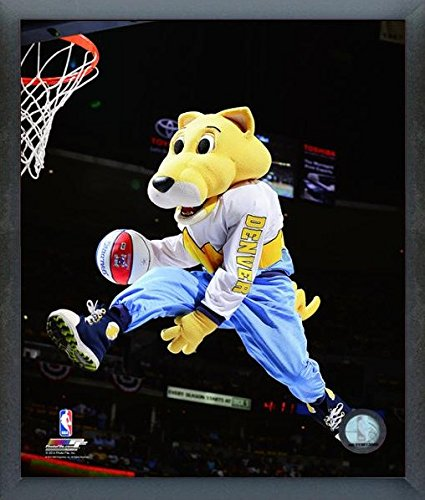 (Denver Nuggets NBA Team Mascot Photo (Size: 12