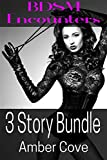 BDSM Encounters : 3 Story Bundle