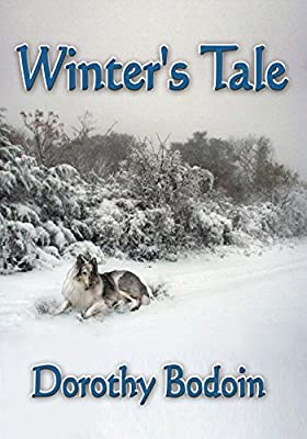 Winter's Tale (The Foxglove Corners Series Book 3)