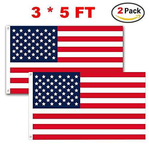 American Flag Outdoor Lights - 4