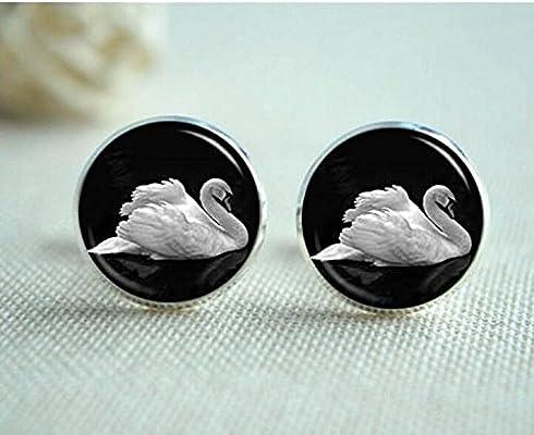 Swan Gemelos, Gemelos de cisne blanco, lago de los Cisnes, Ballet ...