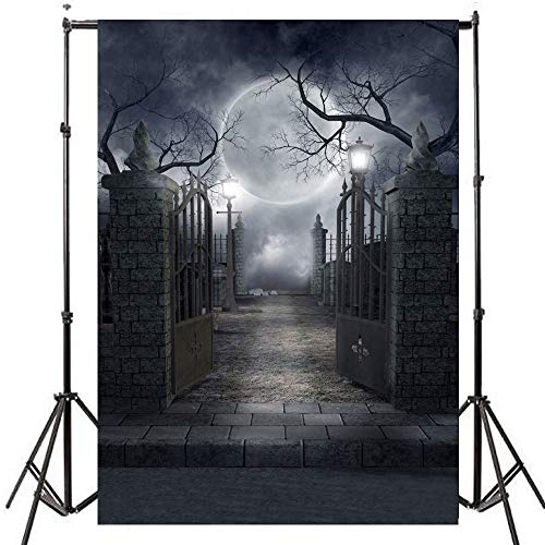Focussexy 5x7ft Mysterious Castle Pattern Photography Backdrop Photo Video Studio Fabric Background Screen for Cosplay Halloween