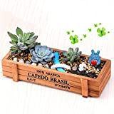 New Wood Planter Garden Yard Rectangle Flower Plant Bed Trough Plant Pot Box