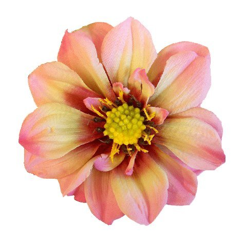 Pink Realistic Large Statement Dahlia Flower Hair Clip Large Flower Hair Clip Bobby Pin Brooch Pin Designed by handcraftUSA Etsy