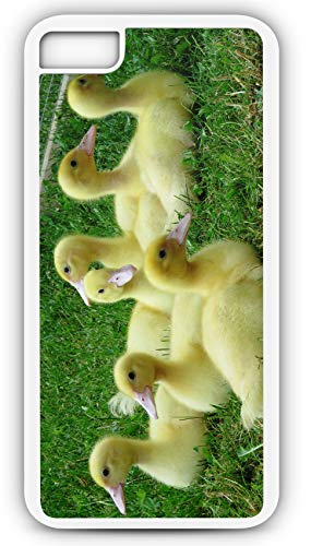 iPhone 7 Plus 7+ Case Bunch of Baby Ducks Ducklings Mallard Customizable by TYD Designs in White Rubber