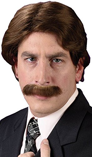 Fun World Men's 70s Star Halloween Party Costume Wig, Brown, Standard