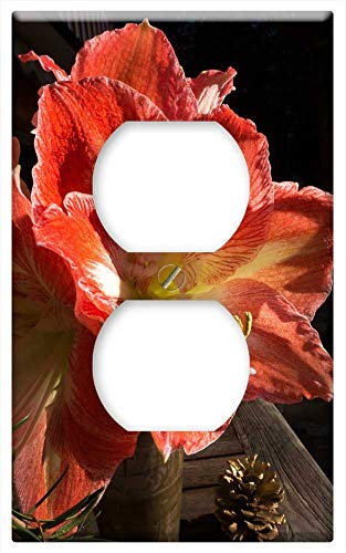 Switch Plate Outlet Cover - Amaryllis Red White Blossom Bloom Flower Plant 4