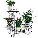 "4 Tiers Garden Cart Plant Stand Indoor Outdoor Metal Flower Pot Plant Holder Display Rack Décor for Home, Living Room, Patio, Balcony, Black, 29.1""x10.2""x 28.3""."
