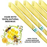 100% Beeswax Non-Toxic Cylinders 10pc Unscented Hollow Beeswax Candles (10 Candle Pack)