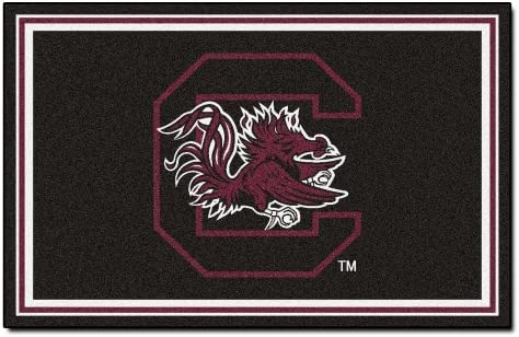 FANMATS NCAA University of South Carolina Gamecocks Nylon Face 4X6 Plush Rug