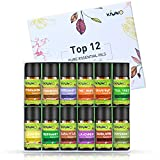 KIUNO Aromatherapy Essential Oils Top 12 Bottles 8ML Lavender,Sweet Orange, Peppermint,Lemon,Tea Tree,Eucalyptus,Rosemary,Frankincense,Cinnamon,Grapefruit,Bergamot,Sandalwood Diffuser Oils