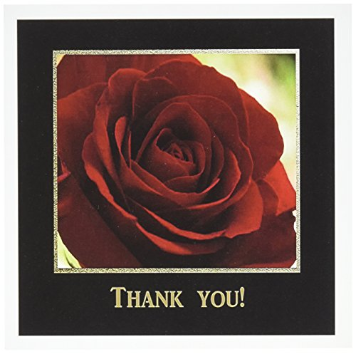 (3dRose Red Rose Frame in Gold and Black Thank You Greeting Cards, Set of 12 (gc_77284_2))