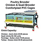 Chicken & Quail Brooder Chick Cage, Poultry Brooder, Comfortplast PVC Cages, Patented Design