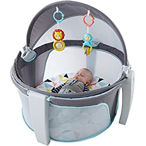 Fisher-Price-On-The-Go-Baby-Dome-Gray-and-White