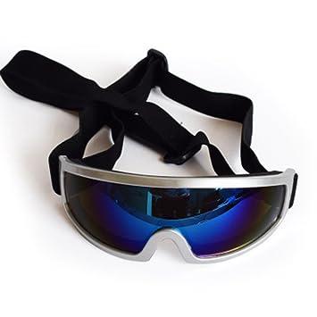 FENG heimtierbedarf Perro Gafas Gafas de Sol Gafas de Sol ...
