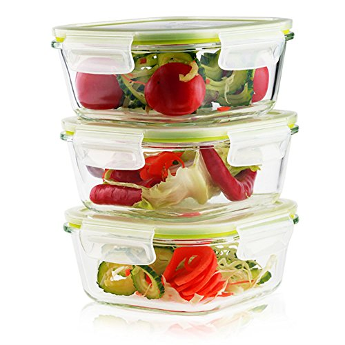 Living Express 6 Pieces Glass Food Storage Container Set (3 containers +3 lids) with Snap Locking Lid,Airtight,Microwave,Oven,Freezer,Dishwasher Safe,27oz,BPA-Free ()