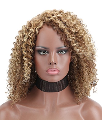 Search : Kalyss Premium Synthetic Afro Kinky Curly L Part Hair Wigs For African American Women (#677 Brown Blonde)