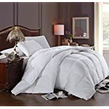 OVER-SZIED KING / California-King Size 300-Thread-Count Hungarian Goose Down Alternative Comforter 100 percent Egyptian-Cotton 300 TC - 750FP - 100 oz - Solid White Down-Alt Comforter