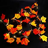 Qedertek Battery Powered String Lights, 8.2ft 20 LED Lighted Fall Garland, Thanksgiving Battery String Lights for Fall Them Party, Home, Indoor and Christmas Decorations
