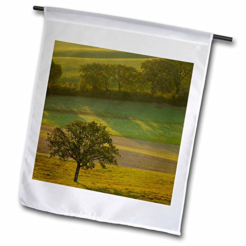 3dRose Danita Delimont - Italy - Hazy sunrise over the countryside, Val dOrcia, Tuscany, Italy - 18 x 27 inch Garden Flag (fl_277549_2) (Hanging Outdoor Tuscany)
