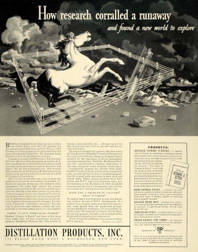 71 Vitamins (1940 Ad Distillation Rochester Horse Vitamin Oil Ester - Original Print Ad)