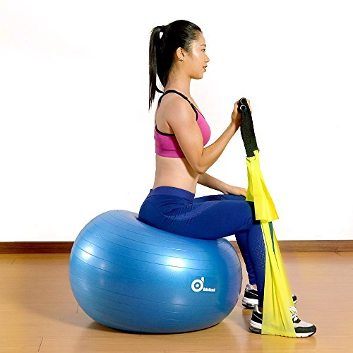 51Tw8mwqOQL 2000lbs Anti-Burst Exercise Stability Ball with 2 Sets Resistance Loop Bands,Pack w/ Pump/Door Anchor and Handles for Yogo,Fitness,Rehabilitation Workout