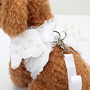 M2cbridge White Dog Puppy Harness Leash Collar Cat Vest Strap With Angel Wings (L)