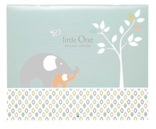 C.R. Gibson Baby's First Year Calendar, Stickers Provided, Measures 11 x 18″ – Linen Tree