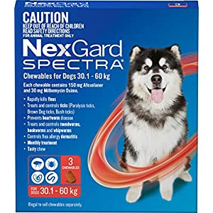 Nexgard, Flea, Tick & Worming Monthly Chew, Spectra, Dog, 30.1-60kg, 3pk Click on image for further info.