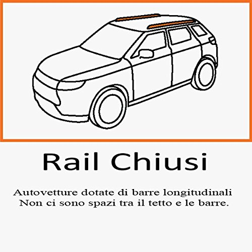 BARRE PORTATUTTO FT PANDA 5 PORTE RAILS CHIUSI DAL 2012 IN POI BARRE NERE