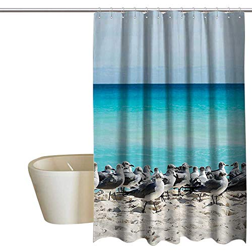 Seagulls Decor Collection Mildew Resistant Fabric Shower Curtain Seagull on the Cancun Beach Yucatan Mexico Sandy Beach Coast Clear Water Picture Waterproof partition curtain 108