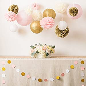 Ling's Moment Paper Flowers, Paper Lanterns, Tissue Pom Poms Circle Dot Garland, Party Decorations Set for Bridal Shower…