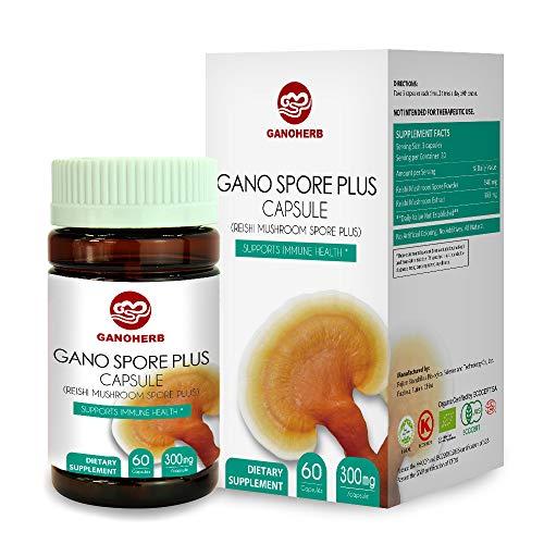 GANOHERB Organic Reishi Mushroom Spore Plus Capsules with 100% Ganoderma Lucidum Spore Powder+ Extract for Boost Immume System,Vegan,All Natural,Non-GMO & Gluten Free,60 Veggie Capsules Anti Alcohol Antioxidants 100 Capsules