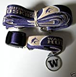 Hunter University of Washington Pet Combo Set (Collar, Lead, ID Tag), X-Small