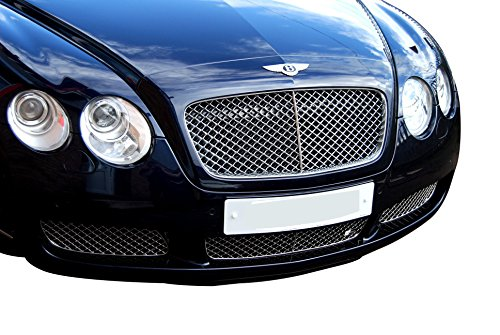 (Zunsport Compatible with Bentley Continental GT Lower Grille (Grill) Set - Silver Finish (2003 to 2007))