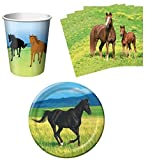 Wild Horses Birthday Party Supplies Set Plates Napkins Cups Kit for 16