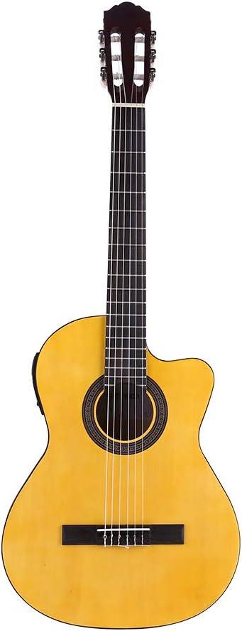 ammoon 39 Inch Guitarra Clásica de Corte, Usando Cuerdas de Nylon y Cuerdas de Acero, con Bolso