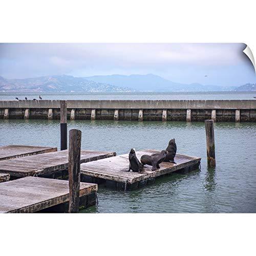 Sea Lions Gather On Pier 39, San Francisco Wall Peel Art Print, 60