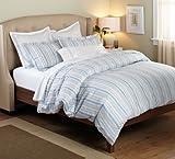 Pinzon 100-Percent Cotton Printed Duvet Set, King, Blue/Grey Stripe