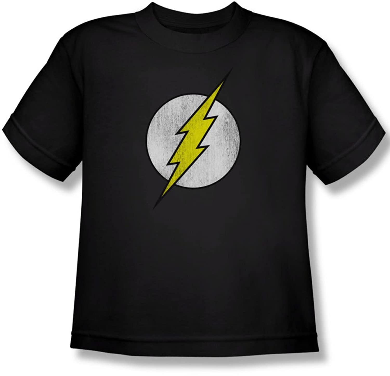 Dc Comics - Youth Flash Logo Distressed T-Shirt