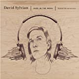 Sylvian, David Died In The Wool (Manafon Variations) Avantgarde/Free