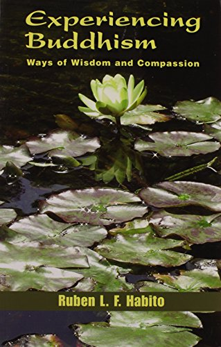 Experiencing Buddhism: Ways Of Wisdom And Compassion (Faith Meets Faith Series)