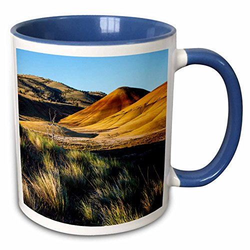 3dRose Danita Delimont - Chuck Haney - Hills - The Painted Hills, John Day Fossil Beds NM near Mitchell, Oregon, USA - 15oz Two-Tone Blue Mug (mug_190070_11)