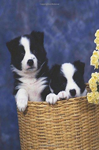 Two Puppies Basket Dog Photo Journal: (Notebook, Diary, Blank Book) (Dog Photo Journals Notebooks Diaries) PDF