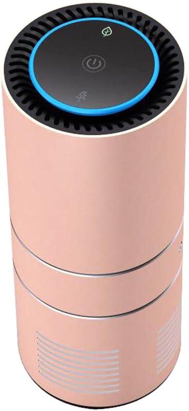 Amazon.es: AnLuna Purificador de aire del ionizador de coche ...